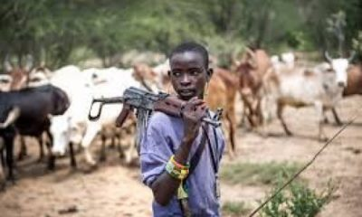 A herds boy fully armed