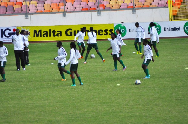 Falconets  during training