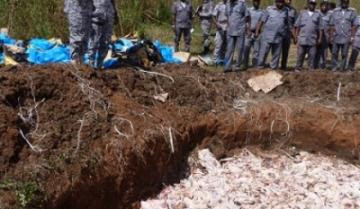 Seized chicken buried by the Customs