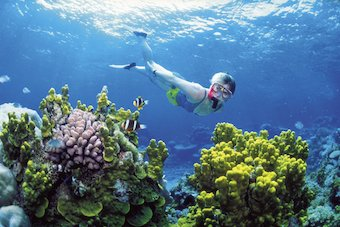 Ausralia's Great Barrier Reef many years ago