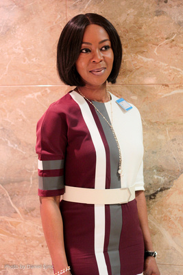 Toyin Saraki: documents showed she was merely fronting for hubby