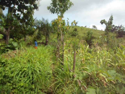 Ushara Hill in Gakem (now in Bekwarra LGA of Cross River State), where the first shot was fired