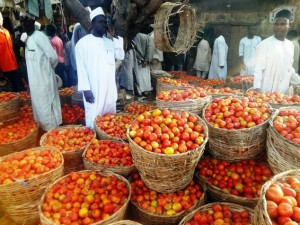 Kano's tomato traders: cost of tomato jumps through the roof