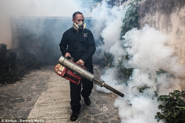 Brazil killing all  mosquitoes