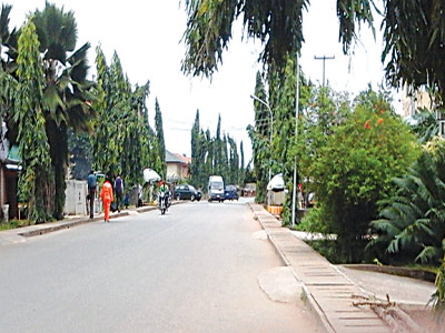a tree lined street in Egbeda, a suburb of Lagos