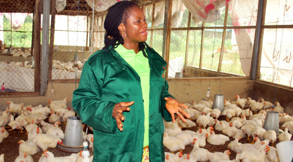 Mrs Bolanle Olafunmiloye at one of the poultry projects of WECA