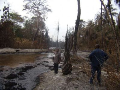 Pollution in the Niger Delta
