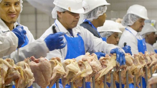 US poultry workers