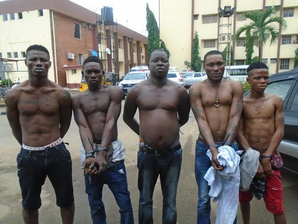 Five of the cultists arrested in Ajah