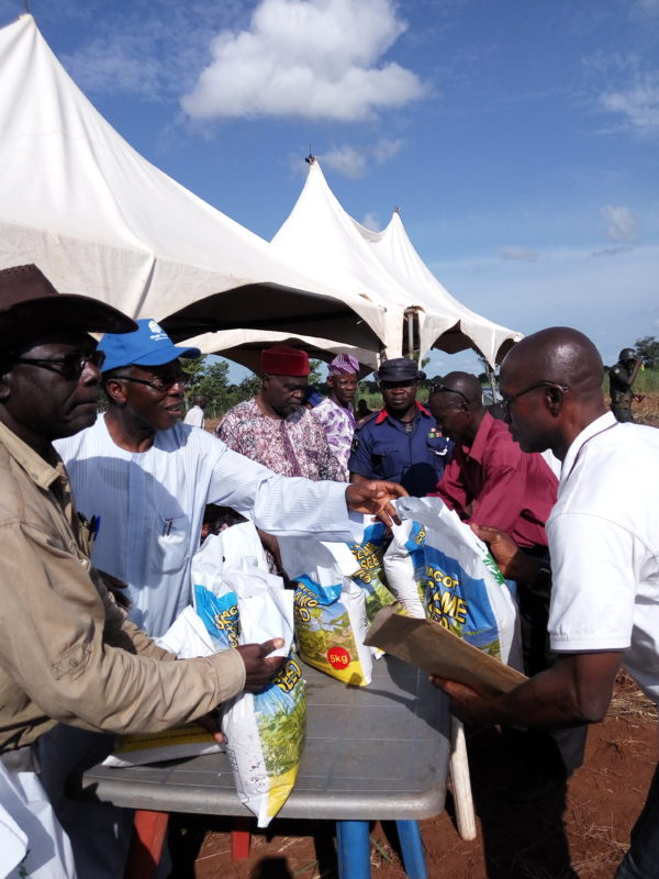 Minister of Agriculture, Chief Audu Ogbeh, giving out sesame seed to beneficiaries on the farm at Otukpo Odu at the weekend