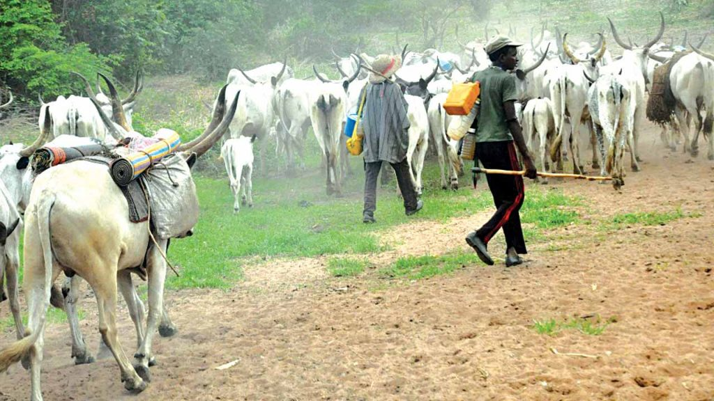 Herdsmen and their cattle