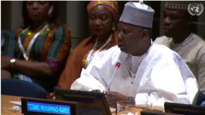 Mohammed-Bande at the session.