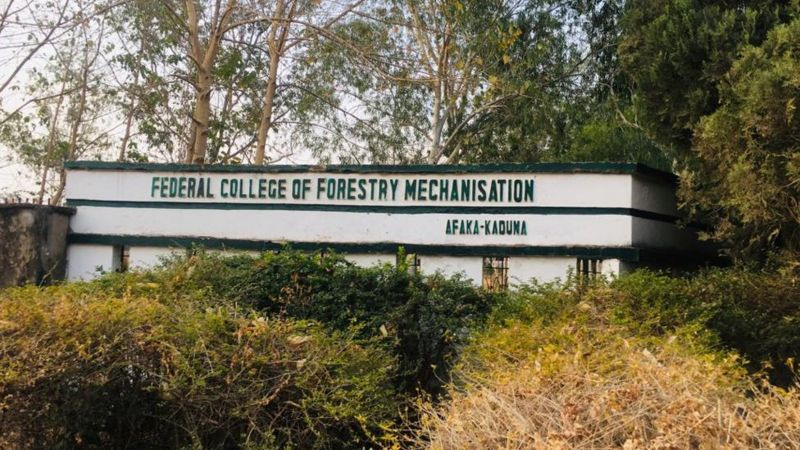 College of Forestry Mechanisation, Afaka: Kaduna: kidnappers threaten to kill abducted students