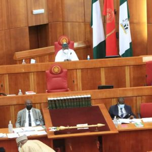 Senate in session: amended Electoral Bill to allow electronic
