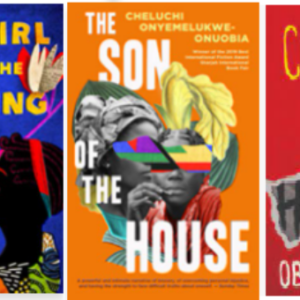The three novels shortlisted for this year's award are Abi Dare's The Girl with Louding Voice, Cheluchi Onyemelukwe-Onuobia's The Son of the House and Obinna Udenwe's Colours of Hatred.